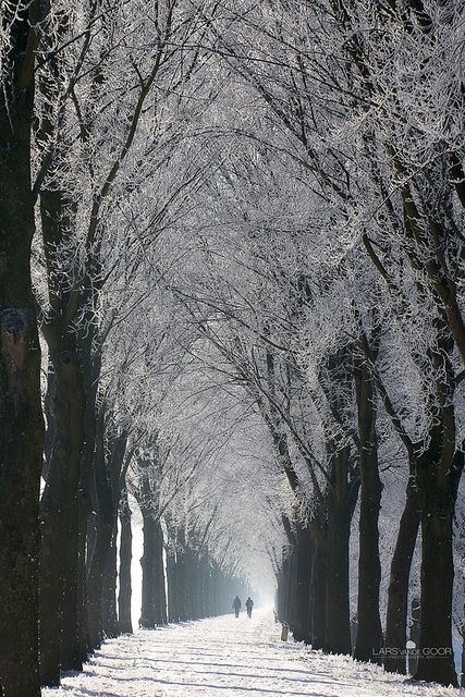 The path of winter, Netherlands
