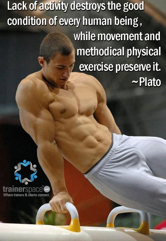 Lack of activity destroys the good condition of every human being, while movement and methodical physical exercise preserve it. ~Plato