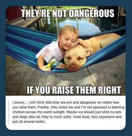 funny-kid-dog-dangerous-raise
