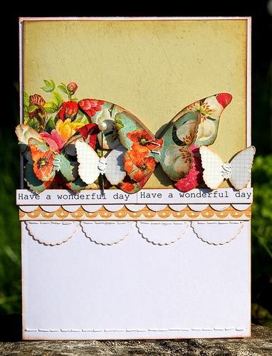 Butterflies :-D