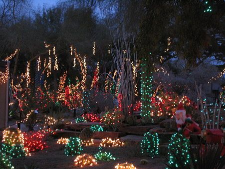 Ethel M Cactus Garden decorated for Christmas