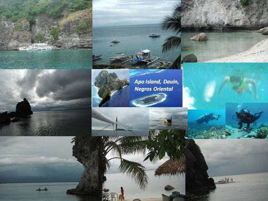The Pristine Island Offers Fantastic Snorkelling And Some Of The Best Diving Site In The Philippines