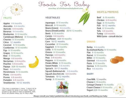 FREE Printable Baby Food Chart