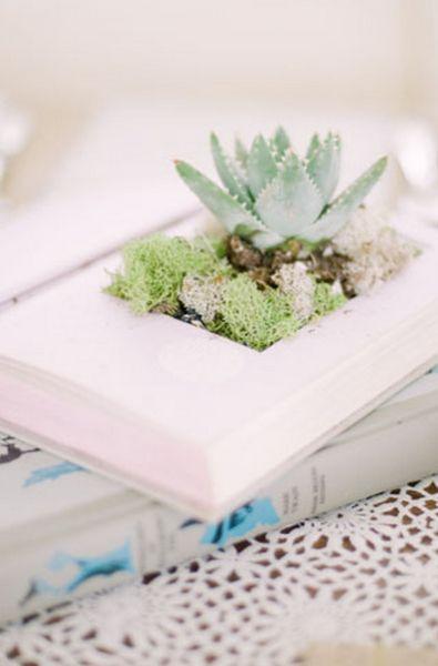 Terrarium in a Book Table centrepiece