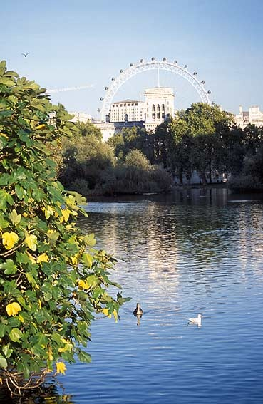 St. James Park and view of Buckingham Palace with London Eye on the background, England