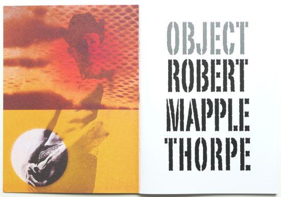 #TheRobertMapplethorpeFoundation #robertmapplethorpe #iconic #photographer #photography #image #object