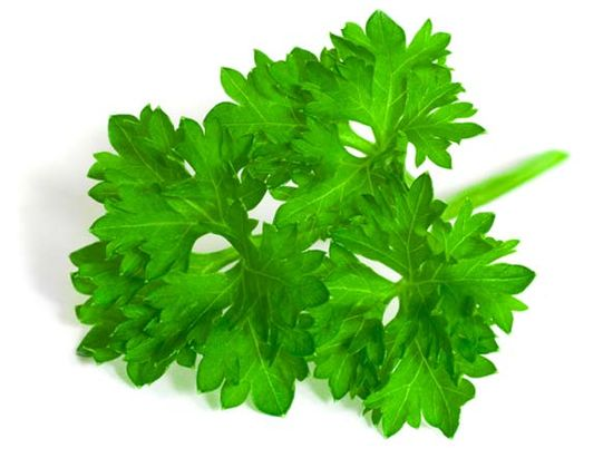 The Health Benefits of Parsley