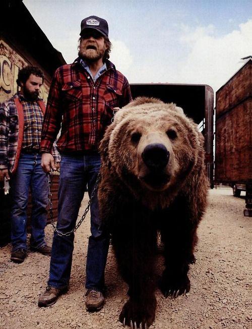 bear for a pet