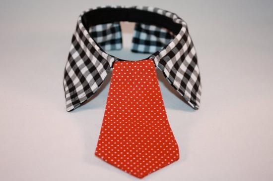 great dog collar!