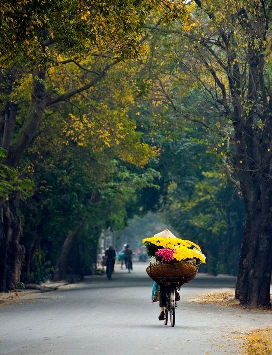 Vietnam - Street life