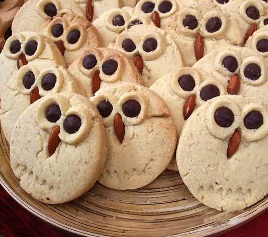 Adorable owl cookies