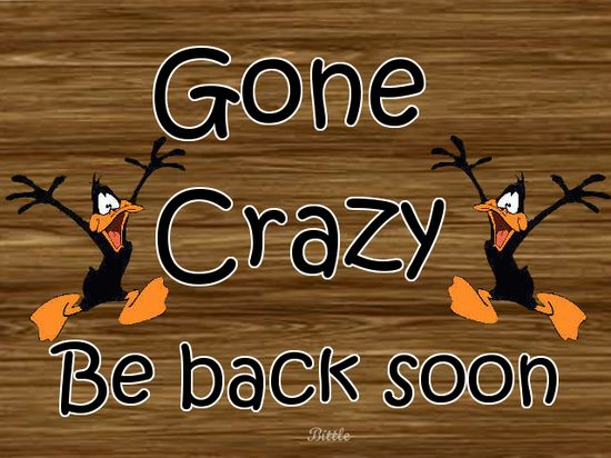 gone crazy funny quotes crazy funny quote funny quotes