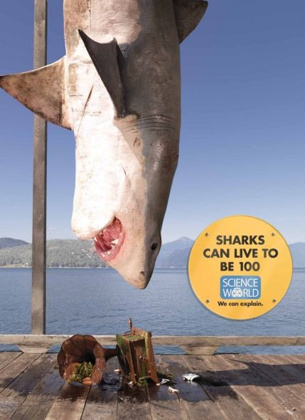 Science World: Shark