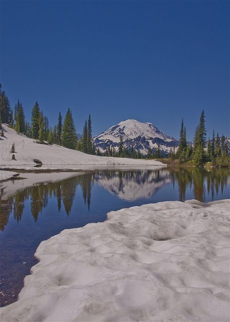 Mount Rainier-love going every year!
