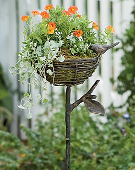 *Bird Nest Planter