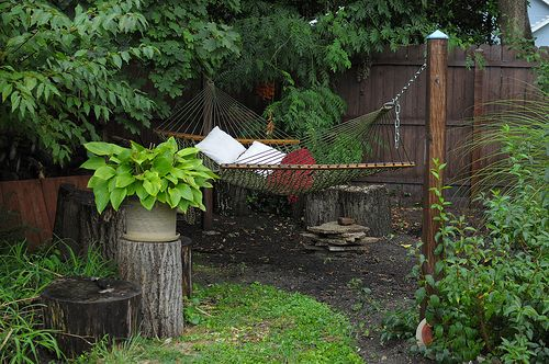 Before and After: A Sustainable Garden Thrives in Del Ray