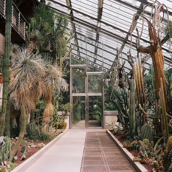 amazing greenhouse