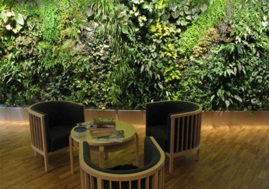 Modern garden design ideas image