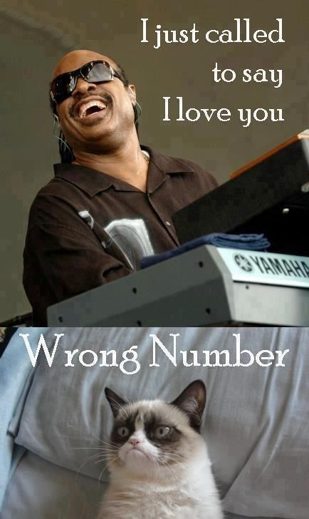 Grumpy cat - I just called to say I love you
