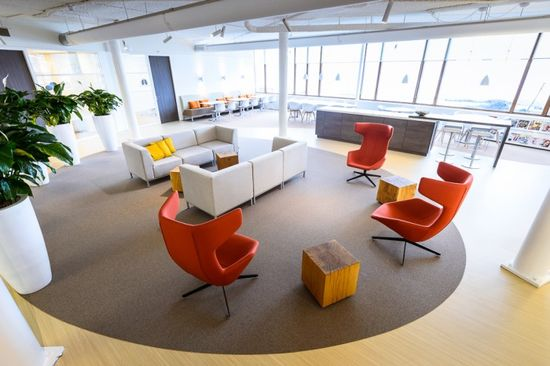 Mind & Health's Calm and Comfortable Office Design