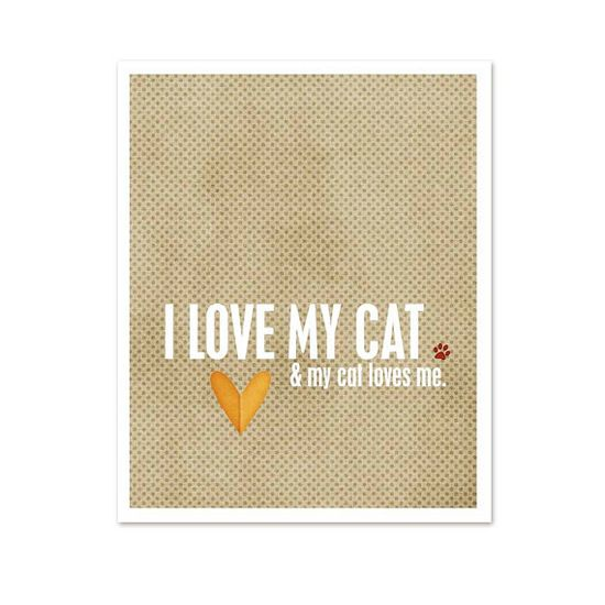 I love my cat...