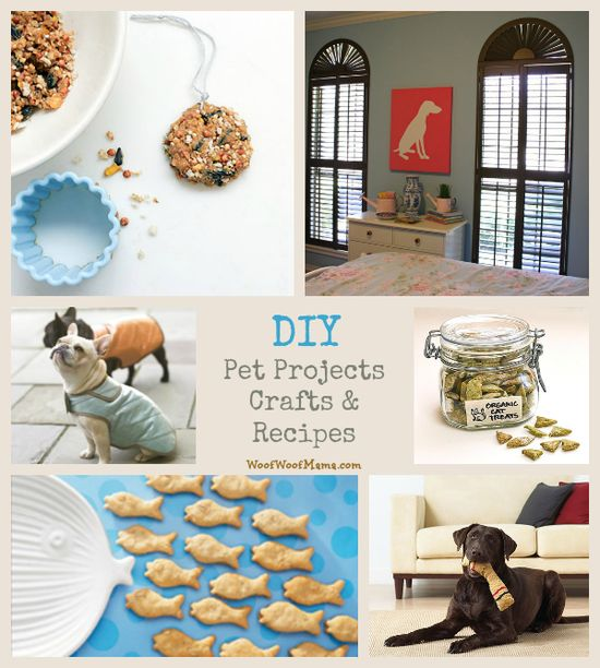 DIY pet projects, crafts and recipes. Great tutorials, recipes, patterns & more!