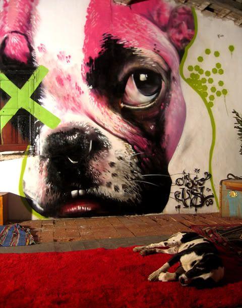 French Bulldog Street Art/Graffiti, Cisco KSL