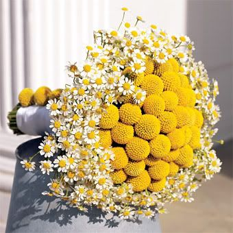 Incredible and simple white and mustard bridal bouquet.