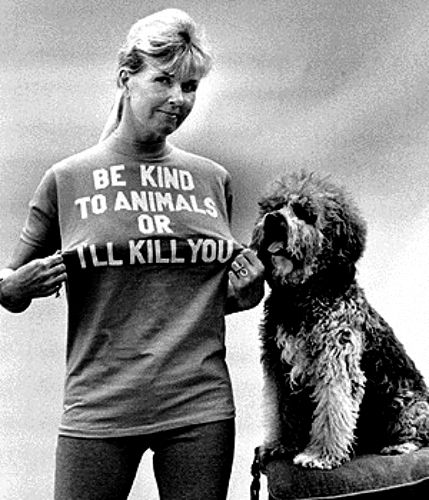 Doris Day a wonderful actress and early advocate for humane treatment of animals in movies.