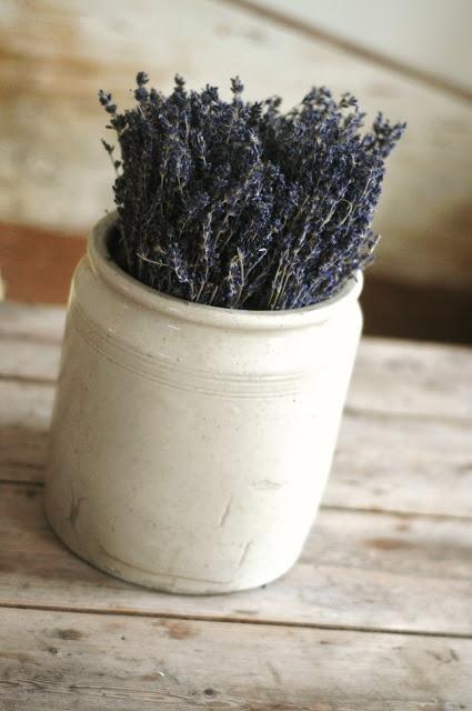 home decor #lavender