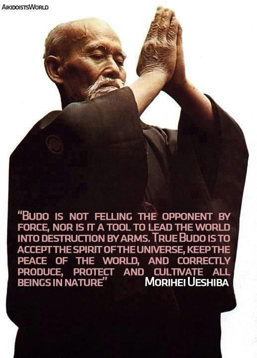 True budo is to accept the spirit of the universe - Morihei Ueshiba