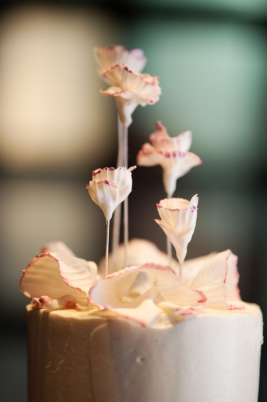 Pretty Cake Top ~ Photography by photopinknyc.com