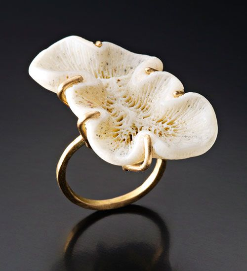 Peg Fetter  Ring 2013  14k gold, found coral
