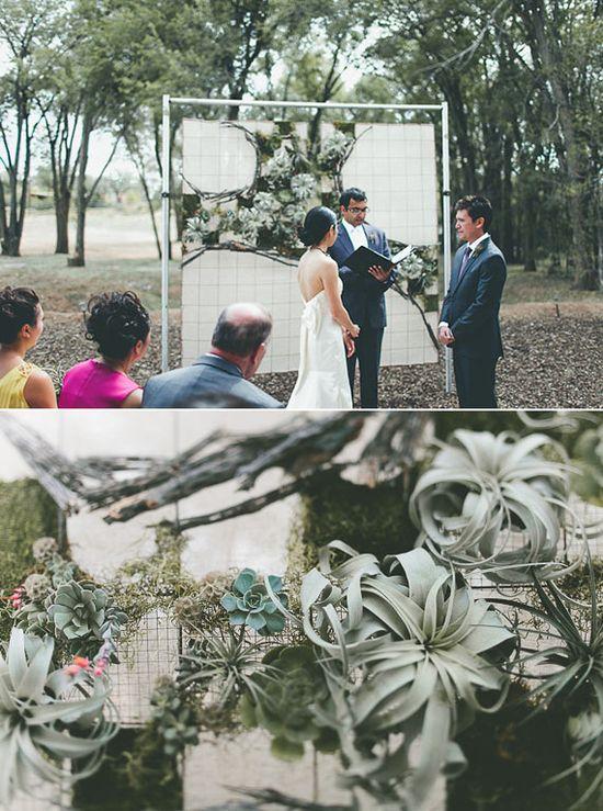 Succulent ceremony backdrop