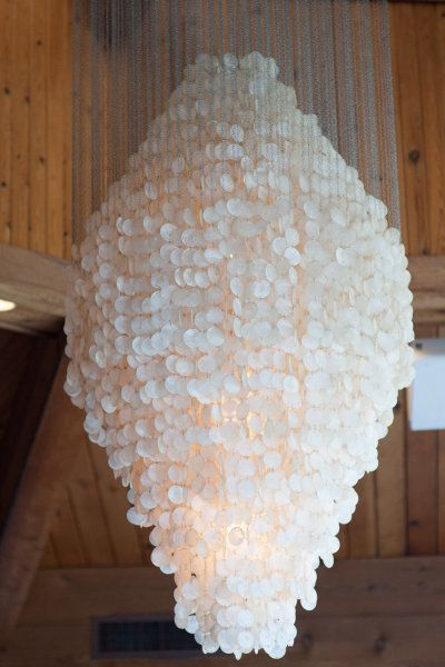 mammoth sized shell chandelier