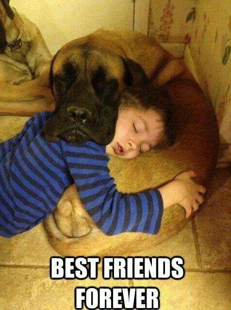 Absolutely man's best friend:)