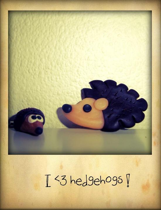 #hedgehog #polymerclay #fimo #cernit #handmade #charm #magnet #cute #brown