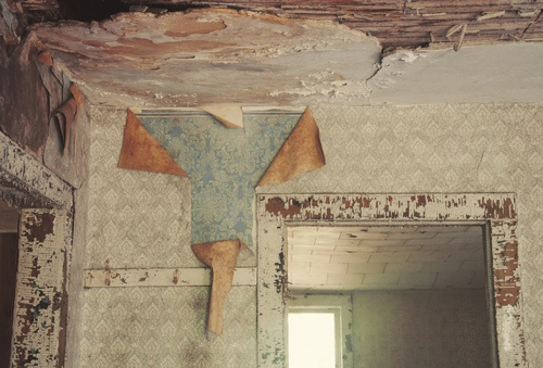 love the peeling layers of wallpaper