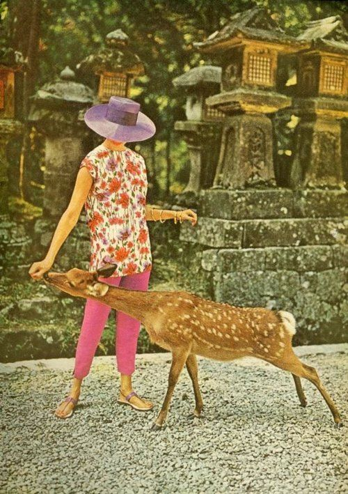 1950s fashion with deer.