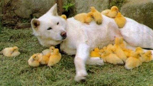 Just hangin with my peeps