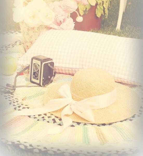 picnic memories