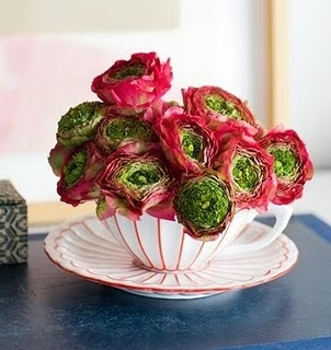 Ranunculus teacup.