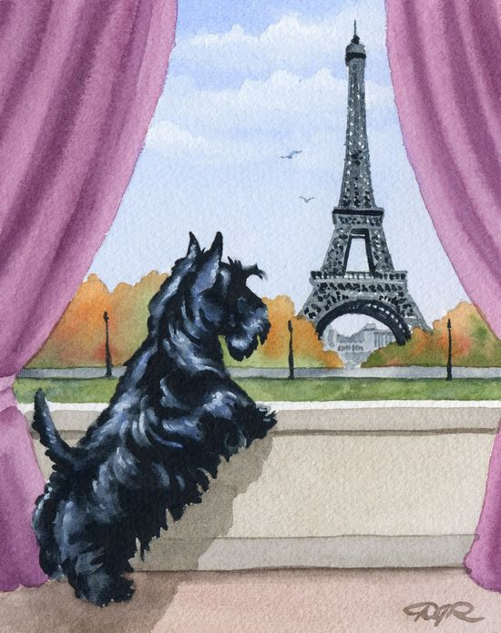SCOTTISH TERRIER In Paris Dog Art Print Signed by by k9artgallery