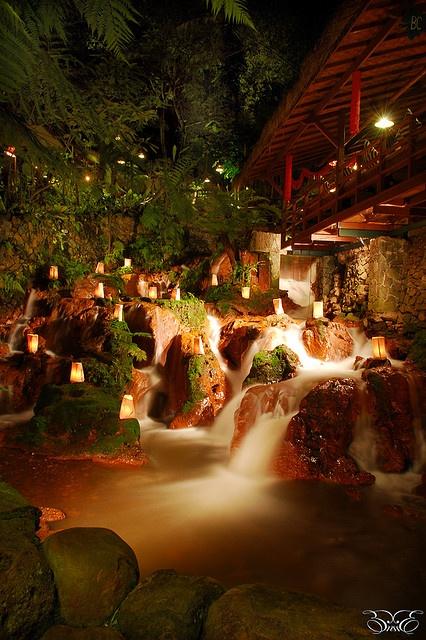 nature & restaurant design