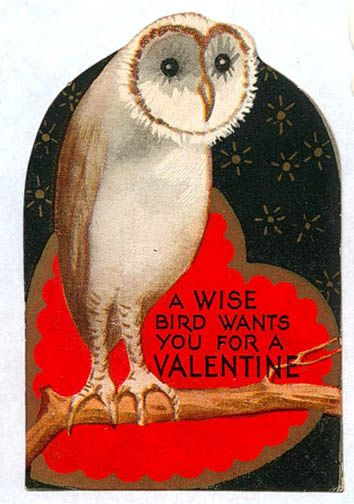 A wise bird wants you for a valentine - Owl Vintage Valentine