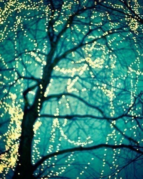 twinkle, twinkle..