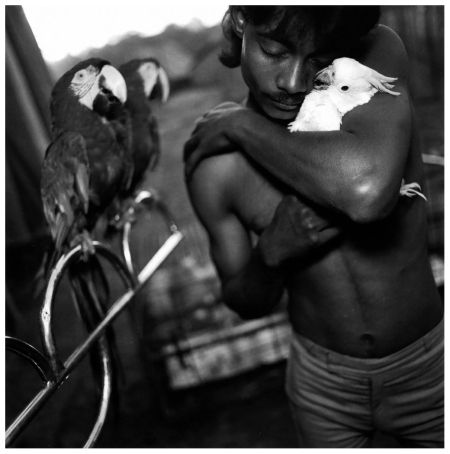 Mary Ellen Mark:   Boy With His Pet Cockatoo, Great Golden Circus, Ahmedabad, India, 1989