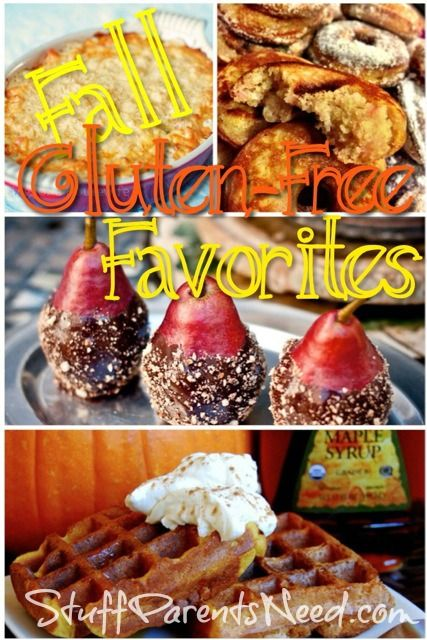 A gluten-free diet doesn't mean you can't indulge in some seriously yummy food this fall! Check out this collection of 9 fantastic gluten-free recipes for fall!