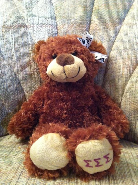 Tri Sigma teddy bear for my Little!