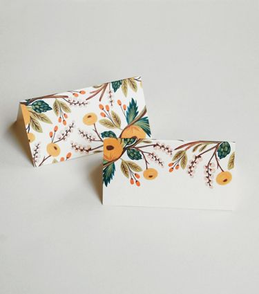 place cards // rifle paper co.